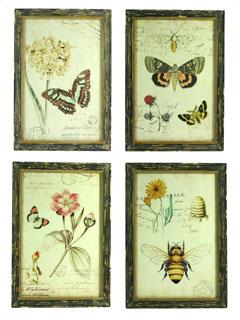 Botanische prenten in lijst set van 4