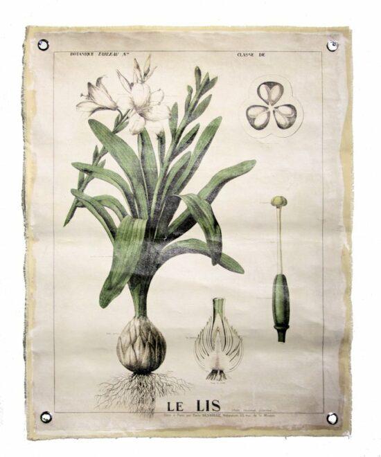 Wandplaat linnen Botanisch
