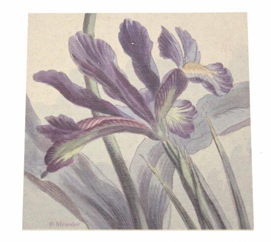 Onderzetter hout Iris