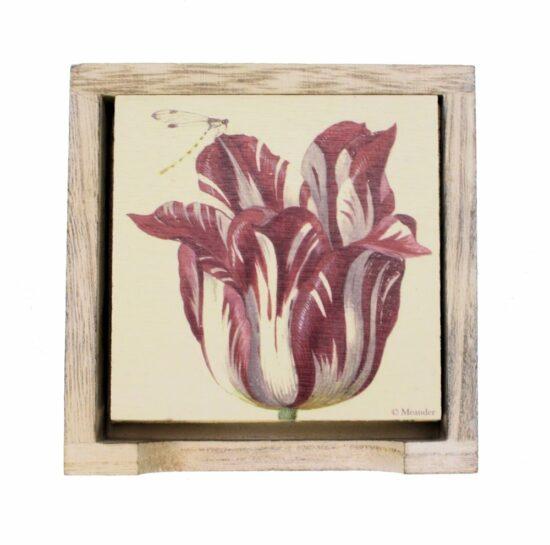 Onderzetters (6) hout in houder Tulp