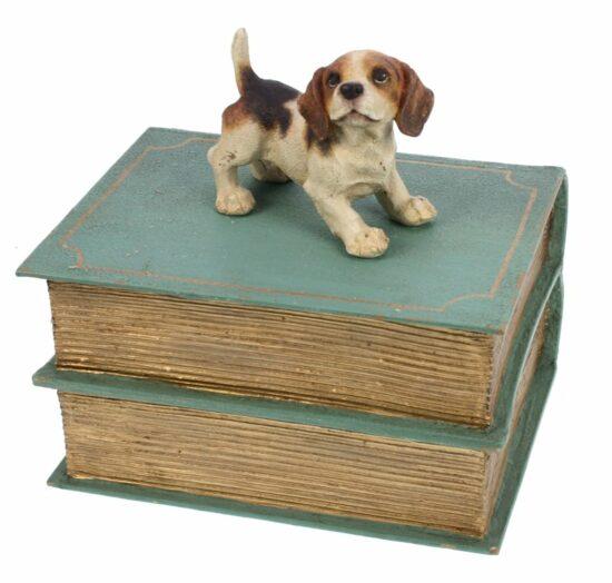 Beagle op boek doosje groen