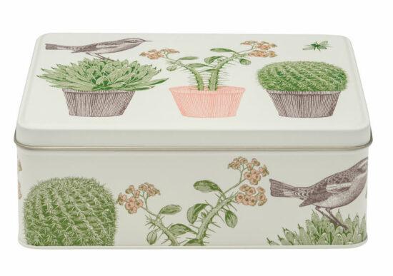 Blik Vogel en cactussen