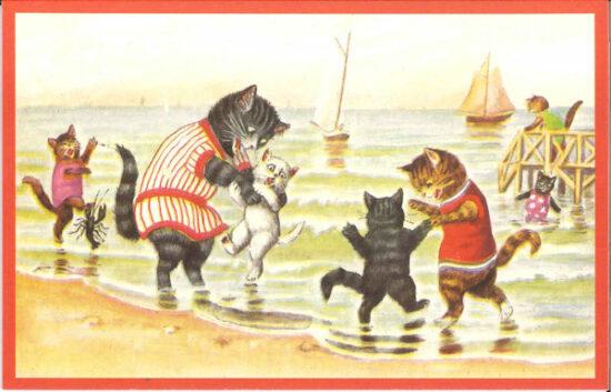 Ansichtkaart Katten watervrees