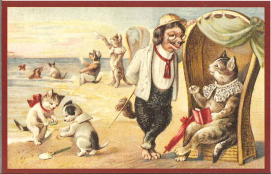 Ansichtkaart Hond en kat aan het strand