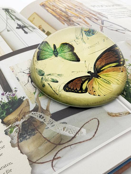 Presse Papier Vlinders