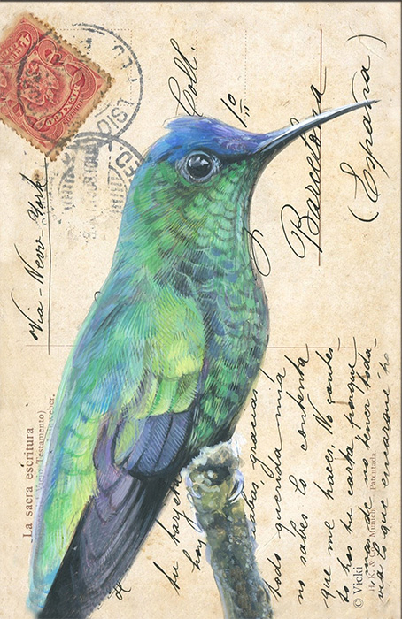 Wenskaart met envelop Kolibrie