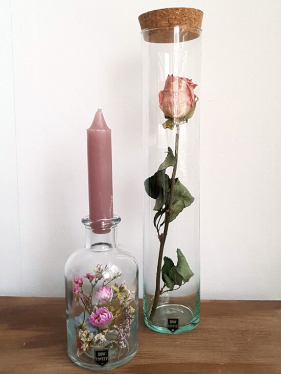 Droogbloem roos in tube
