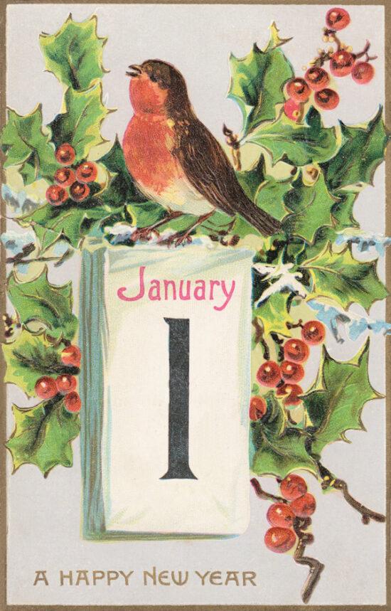 Ansichtkaart Kerst Roodborstje Nieuwjaar