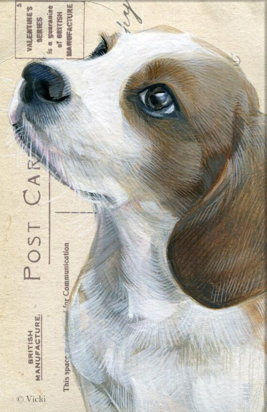 Wenskaart Beagle met envelop