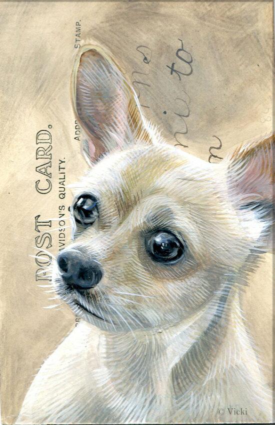 Wenskaart Chihuahua met envelop