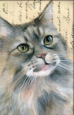 Wenskaart perzische Kat met envelop