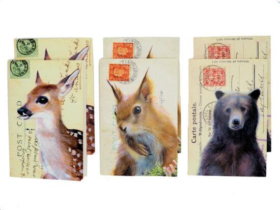 Wenskaarten met envelop Bosdieren set 6 stuks