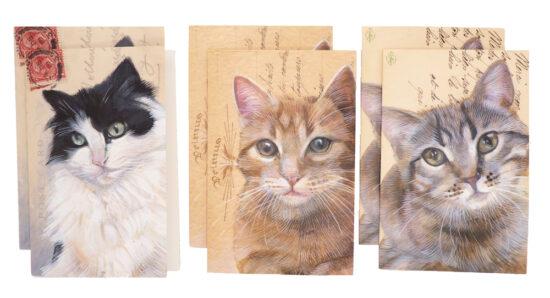 Wenskaarten met envelop Katten 6 stuks