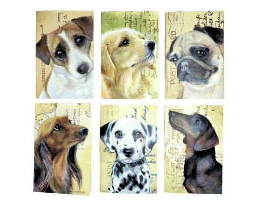 Wenskaarten met envelop Honden 6 stuks
