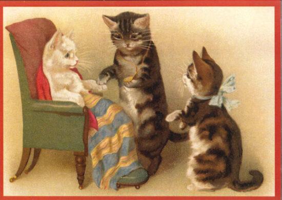 Ansichtkaart ziekenbezoek katten