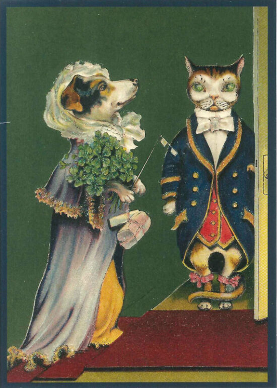 Ansichtkaart kat en hond in kostuum