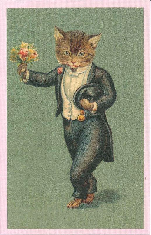 Ansichtkaart kat in kostuum