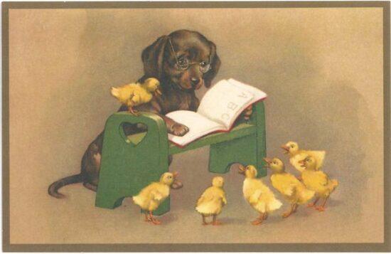 Ansichtkaart hond leest voor