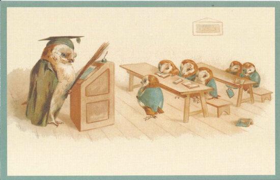 Ansichtkaart uilen op school
