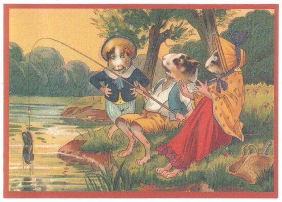 Ansichtkaart cavia's aan het vissen