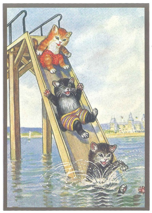 Ansichtkaart katten op waterglijbaan